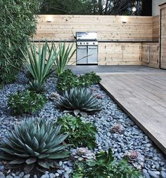 thehousehome:  Drought resistant gardens for all you...