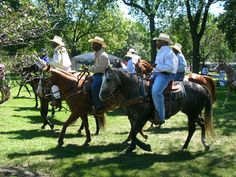 Today's Black Cowboys