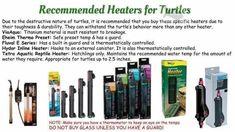 Turtle heaters Turtle Care, Pet Turtle, Slider Turtle, Aquatic Turtles, Amphibians, Peacock, Pets, Animals, Animaux