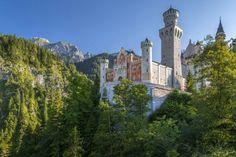 Neuschwanstein Castle, Europe, Castle Rock, Gay Art, Notre Dame, Germany, World, Building, Castles