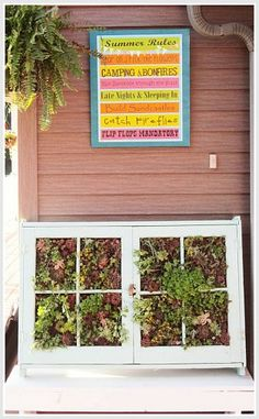 Barb C.'s Upcycled Vertical Succulent Garden made from an old window frame... I like it!