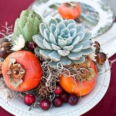 Vibrant Fall Harvest Succulent Centerpieces: Perfect for a fall wedding.