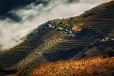 Волшебная долина — National Geographic Россия
