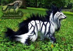 Zebra fox