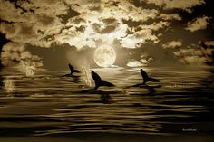 Tomorrow is Another Day by Angela A Stanton: How long are we doing to see those flipper of the whales? They are so beautiful. This image is an painting combined with the photograph of the full moon I took tonight and applied textures as well.
