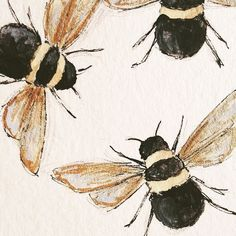 "jpaddey: "" Tumblr I am very busy and have no time for personal drawings, so here are some bees that I did awhile ago. Busy bees……. I'm sorry. """