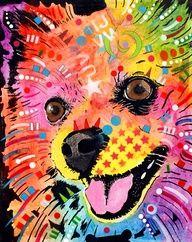 Pomeranian pop art