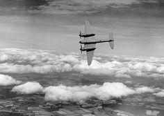 De Havilland Mosquito - BFD