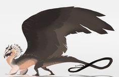 Bearded vulture dragon by oukamiyoukai45.deviantart.com on @DeviantArt