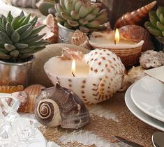 Sea shell candles from pottery barn- I like these for wedding favors or decor for my Jamaica wedding