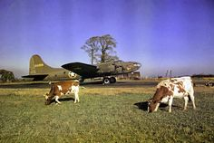 B 17F Flying Fortress