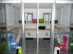 Our cattery is situated in our