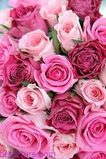 خلفيات ايفون ورد جميلة جدا Iphone Flower Background Flowers Bouquet Pink Flowers Flower Wallpaper