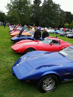 C3 Corvette Buffet