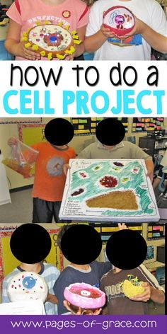 Take home assignment biology cell