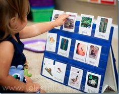 LOVE this idea for the target dollar spot pocket charts!!!!