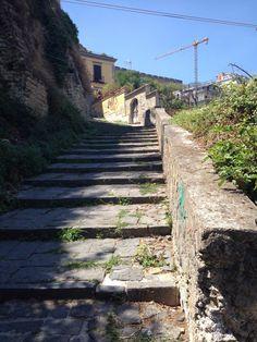 Pedamentina San Martino, Naples: See 49 reviews, articles, and 62 photos of Pedamentina San Martino, ranked No.103 on TripAdvisor among 470 attractions in Naples.