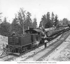 Crew and Saginaw Timber Company's class B Climax locomotive no. 3 with log train, near Saginaw, n.d. :: Kinsey Brothers Photographs of the Lumber Industry, 1890-1945