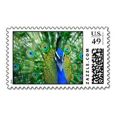 PROUD PEACOCK POSTAGE STAMP