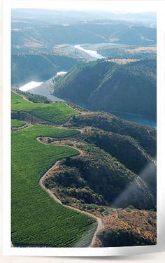 Serie Riveras Gran Reserva Vineyards from Concha y Toro