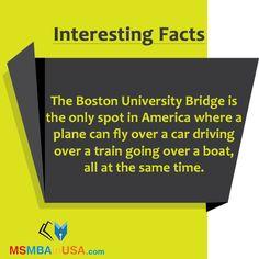 #InterestingFacts  Via  http://www.msmbainusa.com