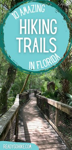 Although Florida might not be the first place you picture when you think of amazing hiking spots, the state is actually home to a variety of scenic trails. If you're interested in doing some hiking in the Sunshine State, you definitely want to check out these best hikes in Florida. These best hiking trails in Florida have options in every part of the state, so you'll have no problems finding some close to you. hike|hiking|hiker|hiking trails|best hikes in Florida|best hiking trails in… Hiking Spots, Hiking Trails, Hiking In Florida, Adventure Activities, Best Hikes, Sunshine State, Travel Info, Family Adventure, Outdoor Travel