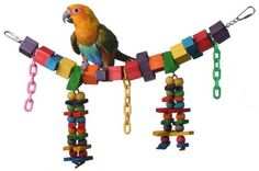 Many birds like to perch and chew on this bridge of brightly colored wooden blocks and colorful plastic chains. Four dangling strands of pine blocks and wooden beads add to the enjoyment factor....