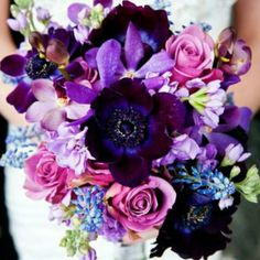 Most beautiful flowers ever