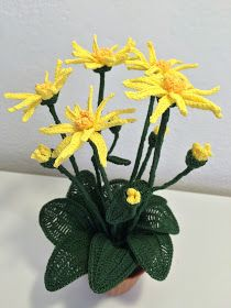 The mountain arnica with its sun yellow colors and enlivens all mountain meadows. A plant that grazing animals avoid due to its unpleasan. Free Crochet Bag, Crochet Home, Bead Crochet, Crochet Gifts, Crochet Doilies, Arnica Montana, Crochet Flower Patterns, Crochet Flowers, My Flower