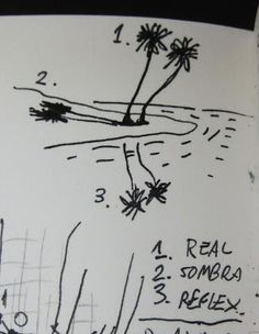 MI LABORATORIO DE IDEAS: Triplica-Tropical