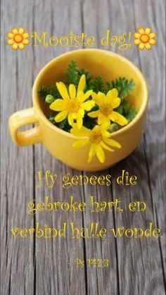 I Thought Of You Today, Assalamualaikum Image, Lekker Dag, Afrikaanse Quotes, Goeie More, Good Morning Wishes, Beautiful Day, Alhamdulillah, Encouragement