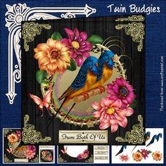 - Three page mini kit includes:- 8 inch square topper and two 3 inch square toppers, insert sheet and decoupage sheet with . Budgies, Pet Birds, Decoupage, Twins, Card Making, Kit, Peacocks, Card Designs, Cards