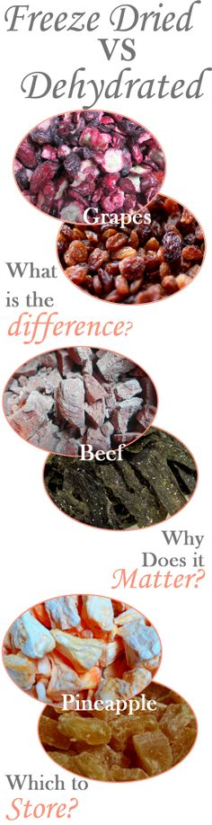 Freeze Dried vs Dehydrated foods -Posted JUNE 23, 2014 BY MISTY