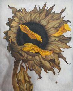 http://dianeburchett.com/sitebuilder/images/dried-sunflower-II-for-web-482x600.jpg