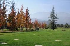 Nuestro Parques - El Prado