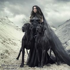 VK is the largest European social network with more than 100 million active users. Steampunk Men, Steampunk Clothing, Punk Fashion, Gothic Fashion, Black Great Danes, Gothic Mode, Goth Look, Halloween Men, Black Magic Woman