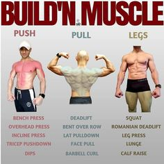 Push/Pull/Legs Split: Day Weight Training Workout Schedule and Plan – Boxen und Krafttraining Fitness Motivation, Fitness Gym, Body Fitness, Easy At Home Workouts, Leg Workout At Home, Fun Workouts, Weekly Workouts, Push Pull Legs Workout, Push Workout