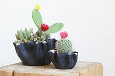 Make These Fabric Clay Planters For All Your Cute Cacti — Apartment Therapy Tutorials | Apartment Therapy Main | Bloglovin'