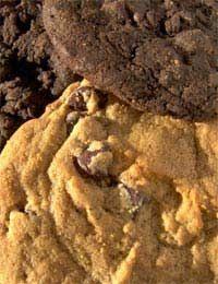 Sugar Free Cookies Recipes Children