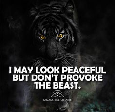 I may look peaceful but do not provoke the beast.< I am the peaceful Person it will give! Yes i had makes mistakes, but i am not bad or criminal! Bc they want push me to be how like them! Positive Quotes For Life Motivation, Motivational Quotes For Life, Meaningful Quotes, Inspirational Quotes, Positive Sayings, Tiger Quotes, Lion Quotes, Wisdom Quotes, Me Quotes