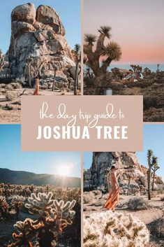 Looking for a great 1 day itinerary for visiting Joshua Tree National Park? Whether you want maps, things to do, great hike ideas or photography sites, this day trip guide has you covered! | #joshuatree #california #USA Top Travel Destinations, Best Places To Travel, Cool Places To Visit, Joshua Tree National Park, Us National Parks, Photography Sites, Travel Photography, United States Travel, California Travel