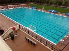 Stanford Avery Aquatic Center Pool Basketball, Volleyball Net, Best University, Stanford University, Stanford Swimming, Tropical Pool, Pool Games, Swim Team, Water Polo
