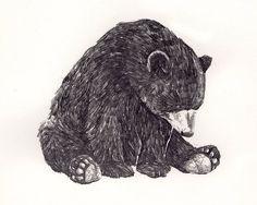 sad bear.