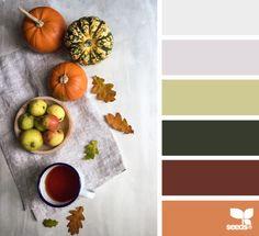autumn hues | design seeds | Bloglovin