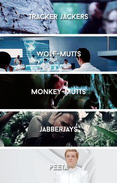 Weapons- omg the last one!!!!! D,,,,,,,,,,,,,; I'M SO DONE WITH THIS AND MY FEELS- ok maybe not :/