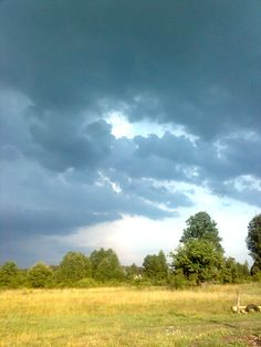 krajobraz przed burzą
