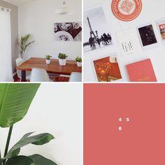 Little Insights | Breanna Rose