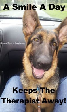 The German Shepherd....the perfect therapist
