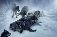 Shangri-La Hotels and resorts: different, entertaining ad effort | Adpunch : Advertising Begins here…
