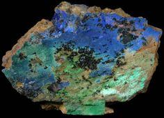 Azurite, Malachite, & Tenorite from Arizona by John Betts Fine Minerals